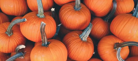 Planning a Safe & Happy Halloween